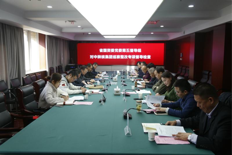 省國資委黨委第五巡察整改專項督導檢查組到集團...